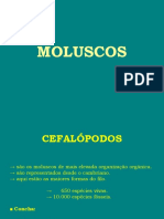 9ª Aula de Paleontologia (PHYLUM MOLLUSCA)