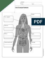 efectos alcohol en el cuerpo.pdf