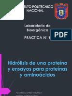 Hidrolisis_de_proteinas.pptx