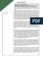 TDRCoordinador(a)turno.pdf