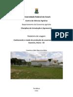 Relatório de Ocara - CE.