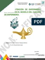 2lineamientos Para La Elaboracion Del Proceso Atencion de Enfermeria (1) (1)