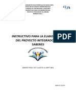 INSTRUCTIVO DEL PIS GRAL.pdf
