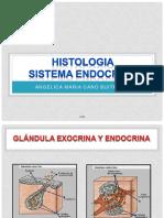 122773018-Histologia-Sistema-Endocrino-Acb-Copia.pdf
