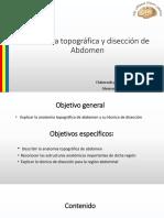 Anatomía Topográfica y Disección de Abdomen