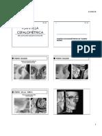 plantilla cefalometrica explicada