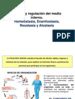 1.1 Introducción y Homeostasia