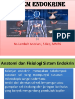Anfis Sistem Endokrine