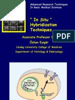 """""""in Situ"""" Hybridization Techniques"""