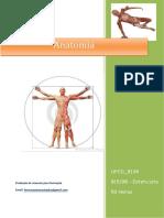 UFCD 9134 Anatomia Índice
