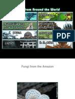 Mushrooms, Fungi From Around The World.pdf