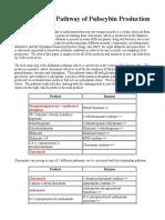 The Metabolic Pathway of Psilocybin Production (1).pdf