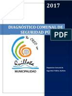Diagnóstico Comunal SP 2017 (1)