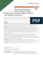 Molecular Identification and Antigenic