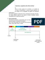 Etapas Reproductivas y Vegetativas Del Cultivo Del Frijol