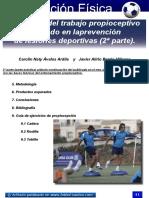 28-propioceptivo.pdf
