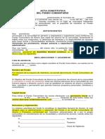 1 Prototipo Acta Constitutiva