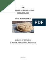 51 Proyecto de Inversion-jaziel Perez Castillo