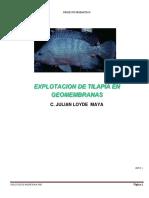 1-proyecto de tilapia..pdf