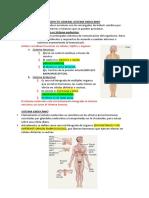 Endocrino General
