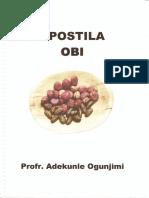 Jogo de Obi - Ifá.pdf