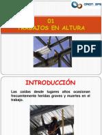 01 Trabajo en altura.pdf