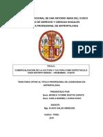 253T20160347.pdf
