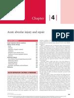 Acute Alveolar Injury and Repair