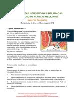 COMO TRATAR HEMORROIDAS COM O USO DE PLANTAS MEDICINAIS.pdf