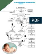 Fluxograma de Atencion Del Recien Nacido Normal