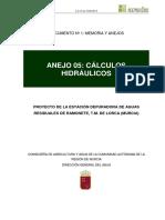ANEJO05_CÁLCULOS HIDRÁULICOS.pdf