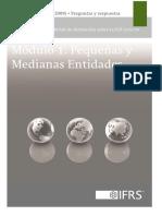 1 - Pequeñas y Medianas empresas.pdf