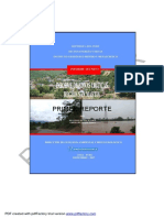 16R_ZONAS_CRITICAS_SANMARTIN.pdf