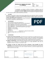 3.7 Formato de Procedimiento de Montaje y Tuberias de Acero Al Carbono