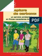 Captura de Carbono (by CATIE).pdf