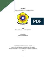 Referat Radilogi Efusi Pleura.docx
