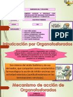 p.a Organofosforados