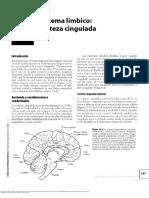 Capitulo 12. Sistema Limbico - Corteza Cingulada