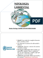 Patologia Ambiental 2018-1.pptx