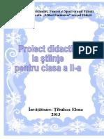 proiectul Iarna