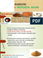 Bab 3 Protista Eukariotik; Cendawan, Protozoa, Algae