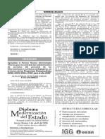 RSG N° 055-2018-MINEDU.pdf