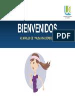 Modulo. Pausas Saludables (1)