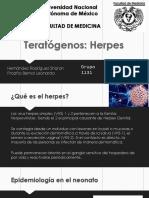 Herpes descripcion
