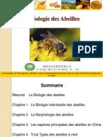 Biologie Des Abeilles