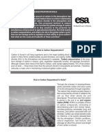 carbonsequestrationinsoils.pdf