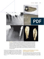 aae clinical diagnosis.pdf