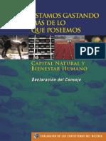 Living Beyond Our Means- Síntesis MEA. Español..pdf