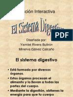 Lección Interactiva-Sistema digestivo.pps