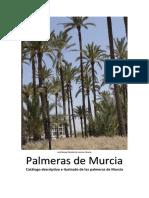 Palmeras_de_Murcia.pdf